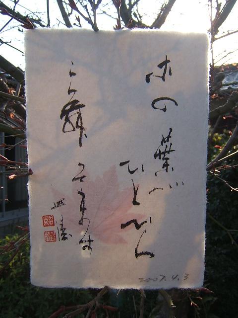 2004_010104040013.JPG