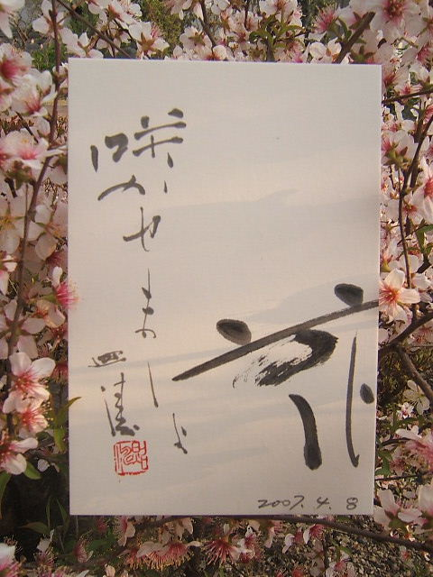 2004_010104080001.JPG
