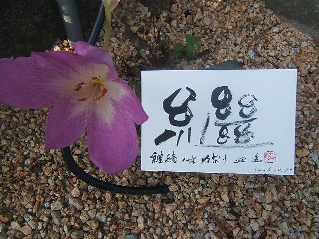 2004_010110130001.JPG