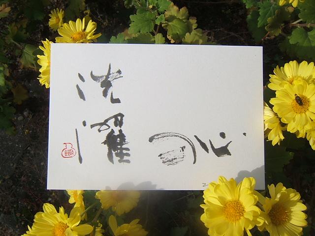 2004_010111210003.JPG