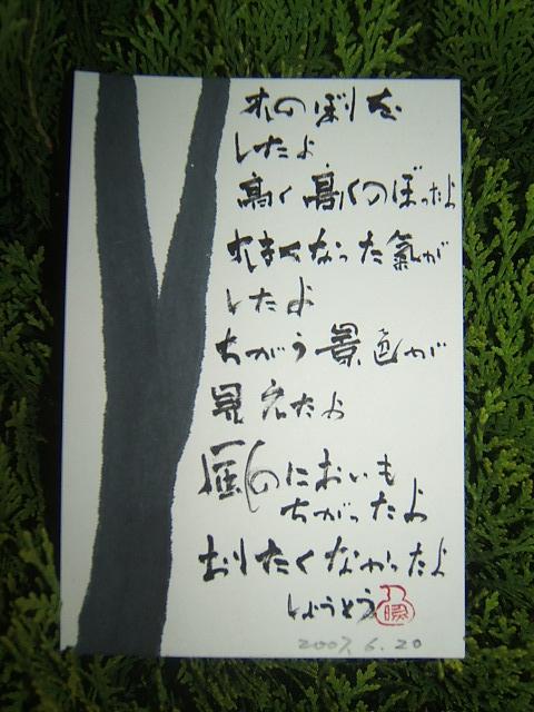 2004_01040706200001.JPG