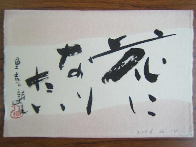 2006_0615照濤6140001.JPG