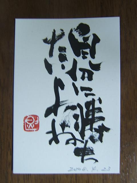 2008_0423200804230001.JPG