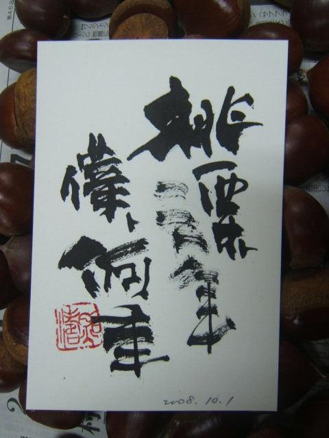2008_1001200810010022.JPG