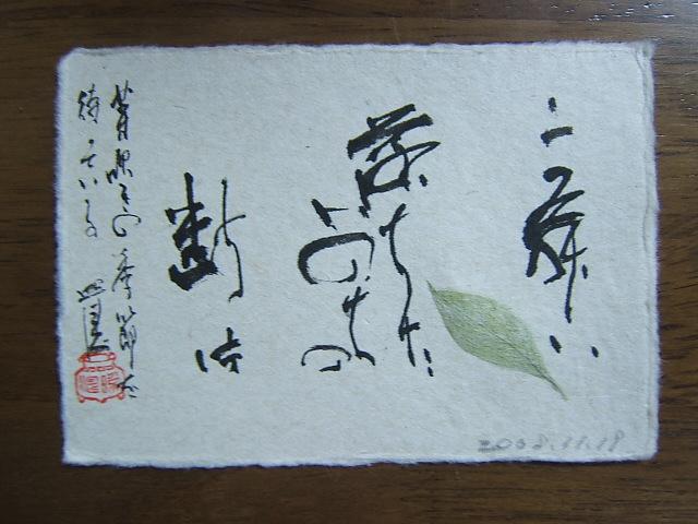 2008_1118200811190013.JPG