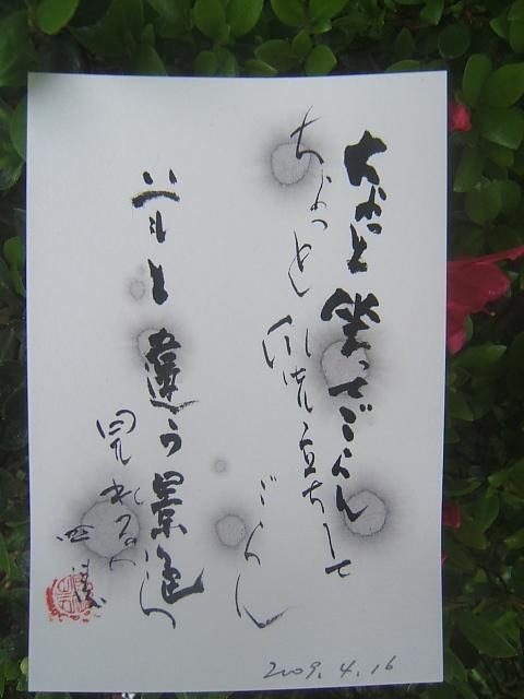 2009_0416200904160042.JPG