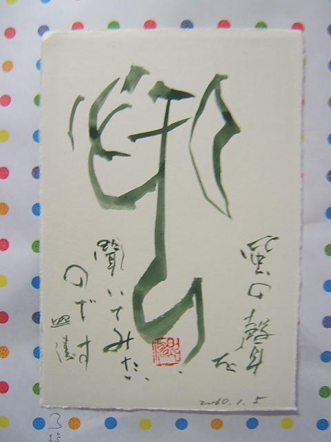 2010_0105201001050015.JPG