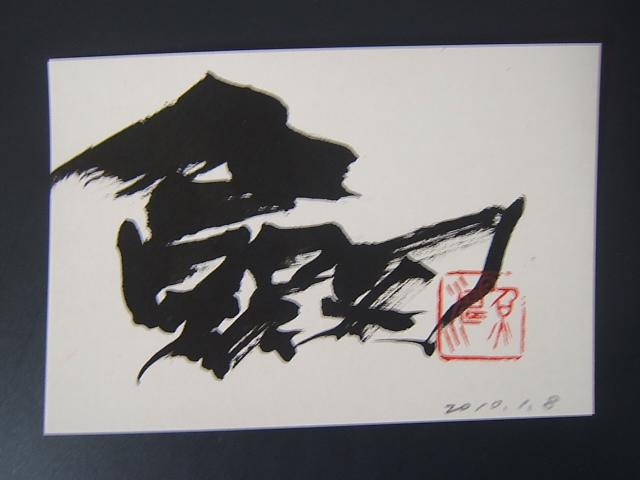 2010_0108201001080015.JPG