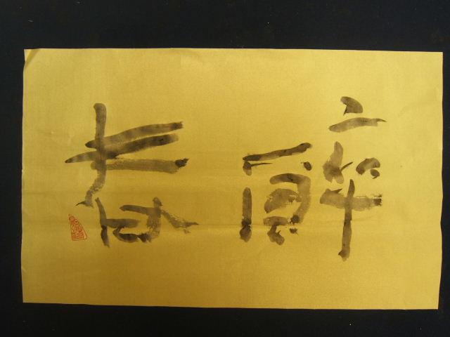 2010_04102010041010004.JPG