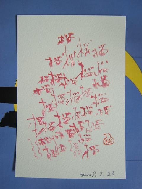 2009_0323200903230076.JPG